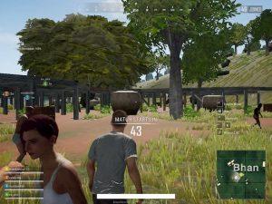 تحميل لعبة pubg lite للكمبيوتر أحدث اصدار